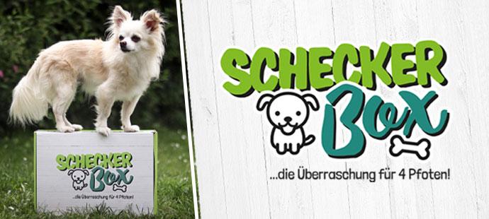 Schecker weiß was Hunde wollen >> Online Shop für Hunde