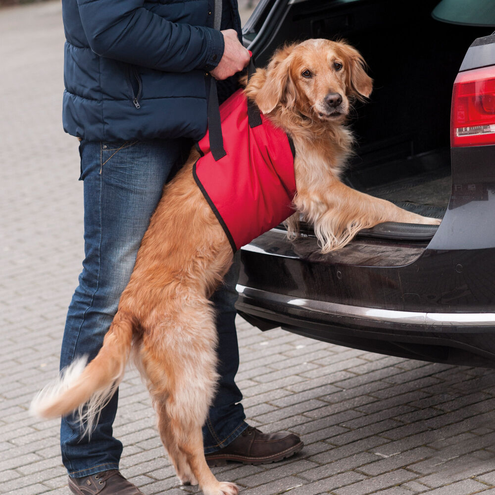 Hunde-Tragehilfe