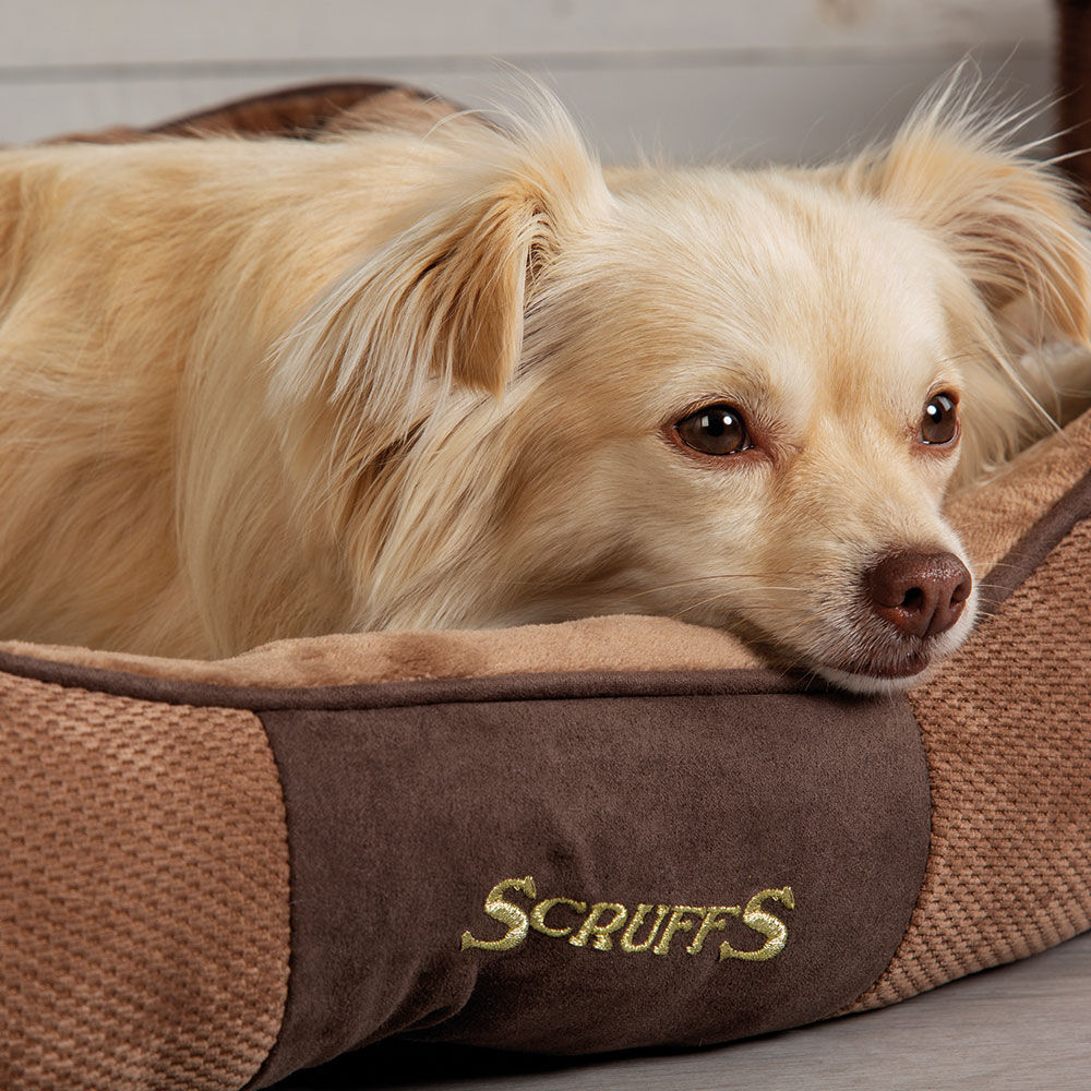 SCRUFFS® Chester Box Bett - Chocolate - Bild 4