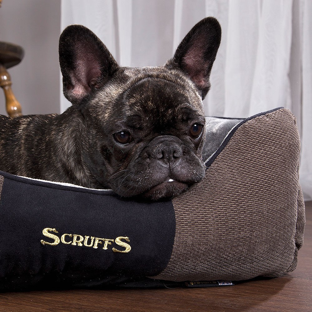 SCRUFFS® Chester Box Bett - Graphit - Bild 3