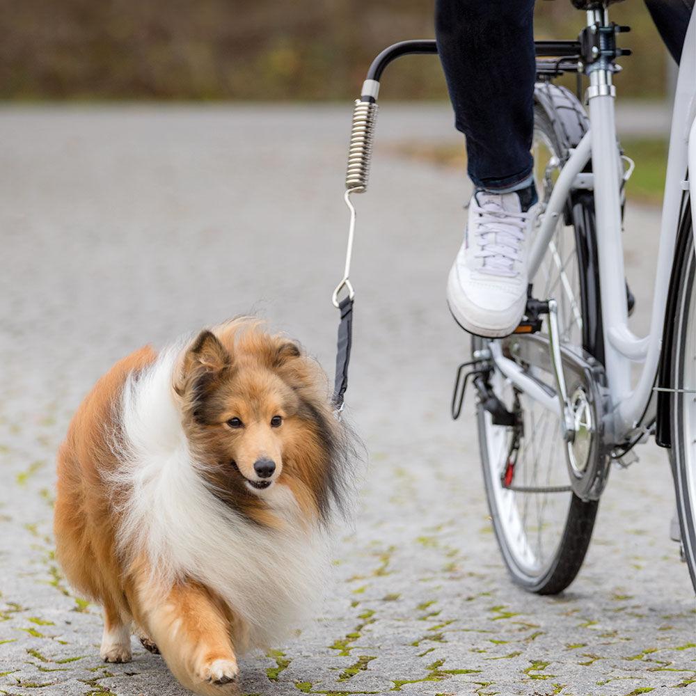 Fahrradhalter Biker