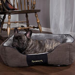 SCRUFFS® Chester Box Bett - Graphit -