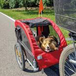 Pet Traveler Fahrradanhänger für Hunde kaufen bei Schecker!