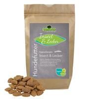 Hypoallergen Insect & Lecker